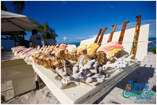 turks and caicos conch festival