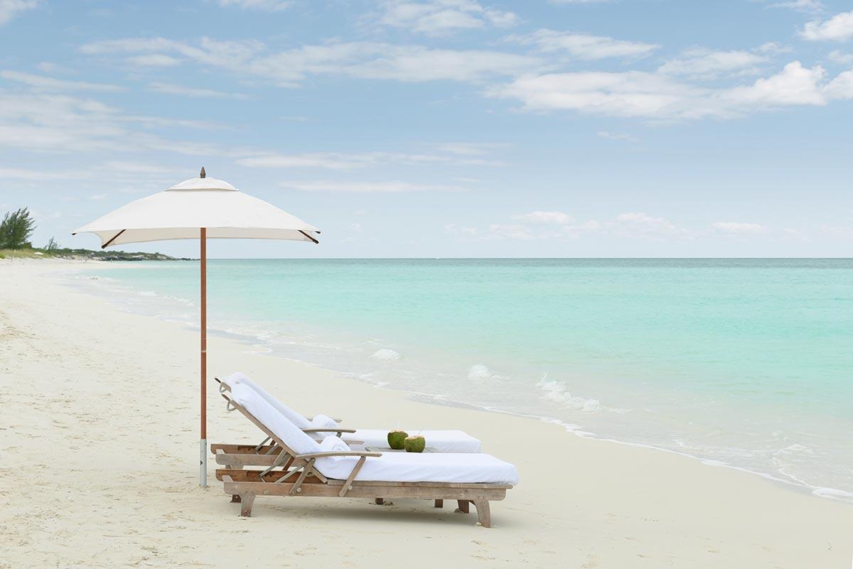 Beach Parrot Cay