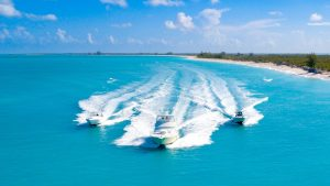 Fish, Snorkel, Cruise, Explore - We'll Take You There!