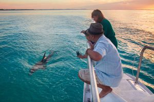 Boat Charters - Ocean Vibes - things To do - Turks & Caicos Islands