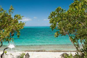Beach : Water Edge Villa - Turks & Caicos villa rentals