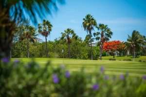 Golf field - Turks and Caicos Golf courcse