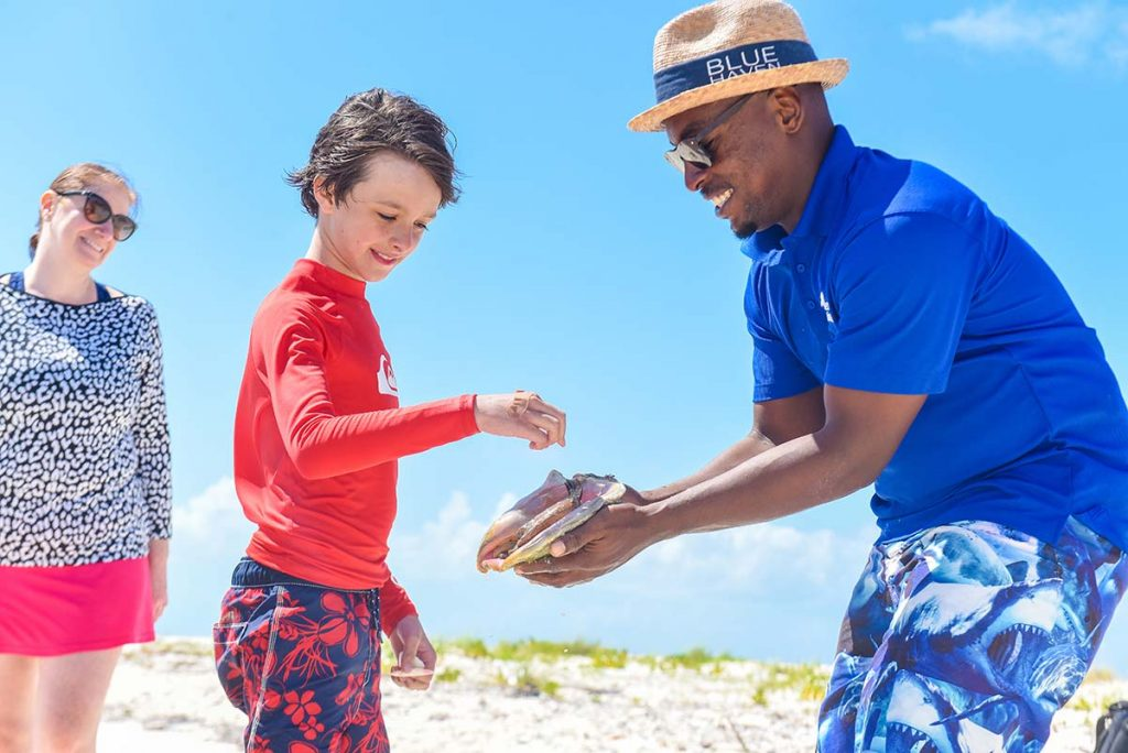 Tours and Excursions Turks and Caicos