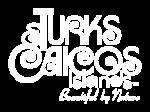 TCI-Logo-1-1024x768white-1024x768