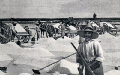 Turks-and-Caicos-salt-raking-500x360