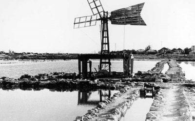 Windmills-41